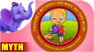 Touching a butterfly can make you turn blind