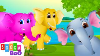 Baby Elephant Song